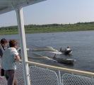 Yenisey river cruise: local escort
